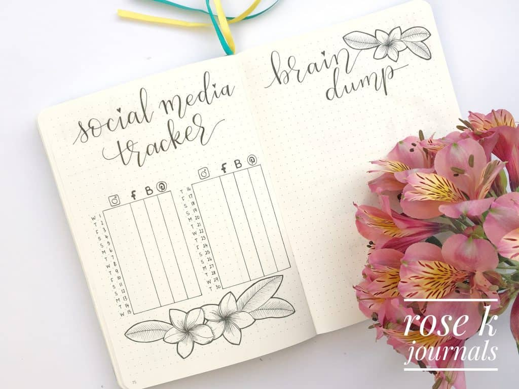 Rose K Journals meal tracker and expense tracker in my bullet journal for November 2017